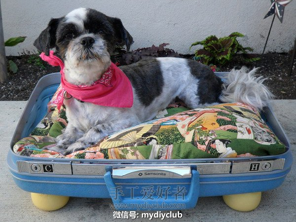 pet-beds-from-recycled-suitcase3.jpg