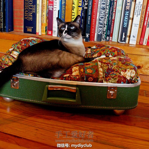pet-beds-from-recycled-suitcase4.jpg